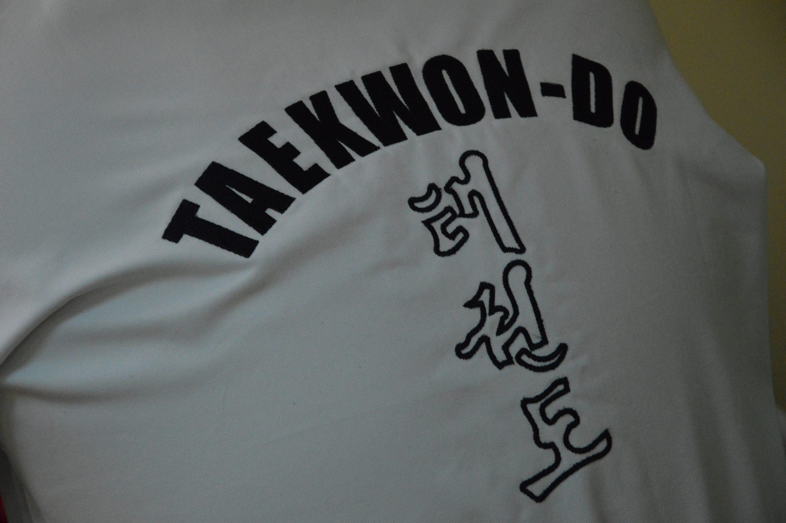 31/08   pokaz sztuk walki TAEKWON-DO  #aktywnywtorek/ fotorelacja